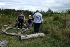 bug-hotel-tidy-up-event-005_0
