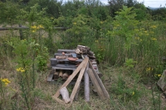 bug-hotel-tidy-up-event-012_0