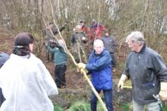 cobnut-pruning-workshop-allington-001