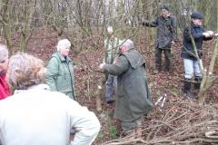cobnut-pruning-workshop-allington-008
