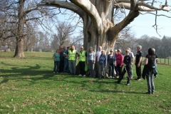 heritage-tree-surveyors-workshop-march-2012-001