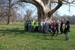 heritage-tree-surveyors-workshop-march-2012-002