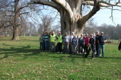 heritage-tree-surveyors-workshop-march-2012-003