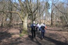 heritage-tree-surveyors-workshop-march-2012-007