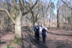 heritage-tree-surveyors-workshop-march-2012-008