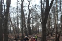 heritage-tree-surveyors-workshop-march-2012-009