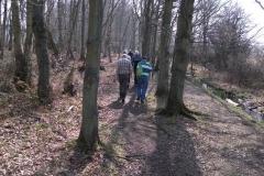 heritage-tree-surveyors-workshop-march-2012-010