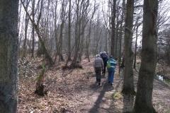 heritage-tree-surveyors-workshop-march-2012-011
