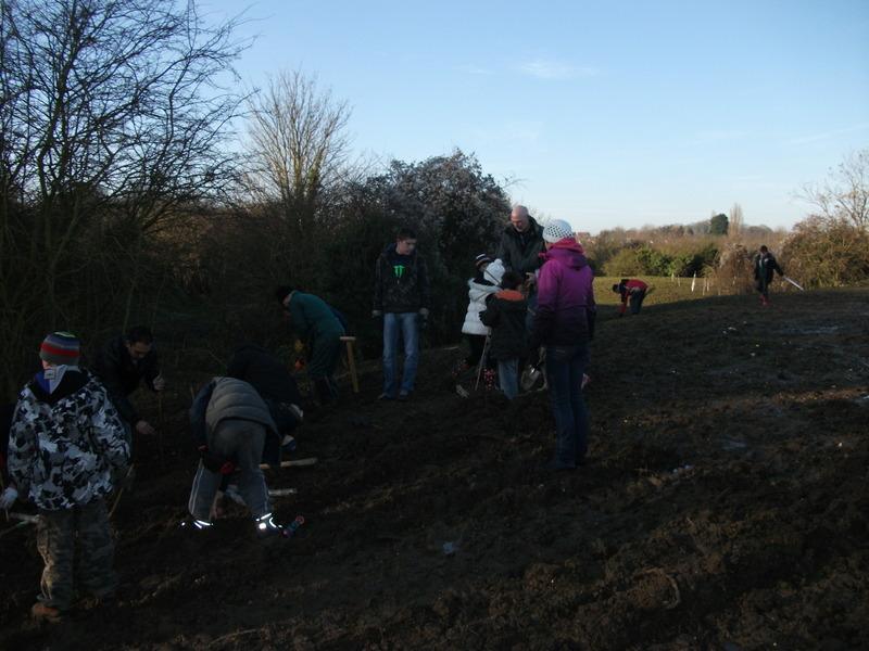 swanley-park-community-hedge-planting-004