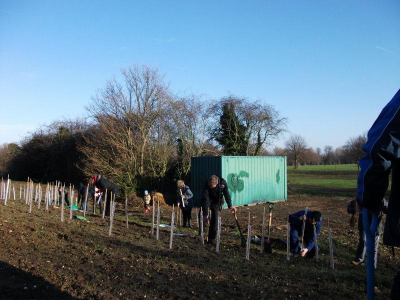 swanley-park-community-hedge-planting-005