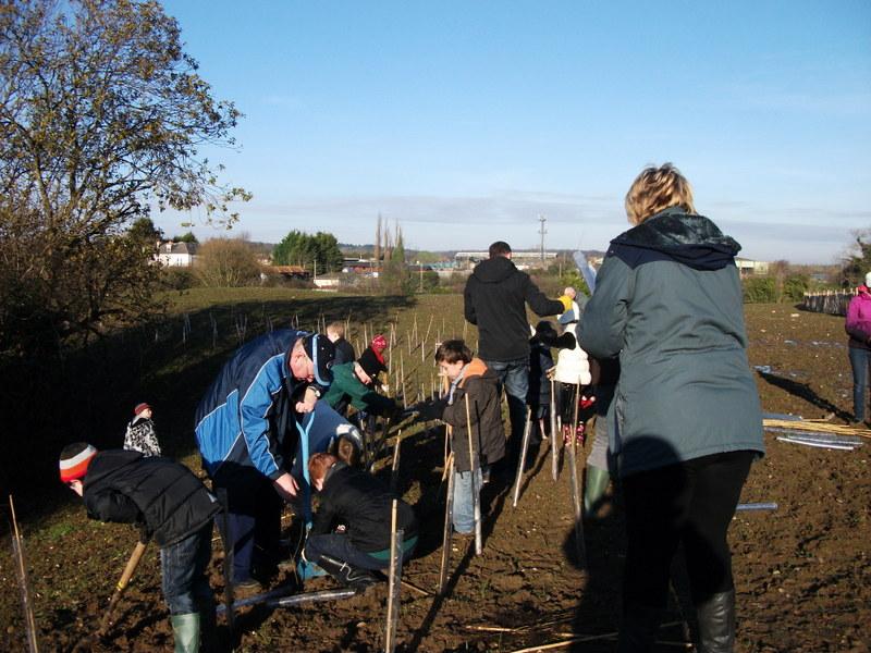 swanley-park-community-hedge-planting-007