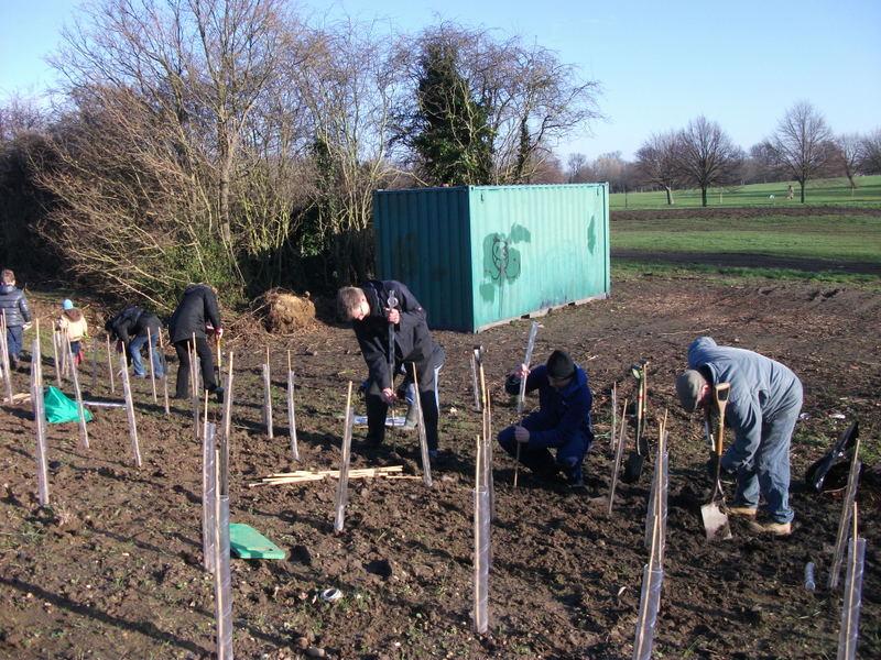 swanley-park-community-hedge-planting-008