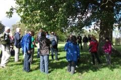 heritage-tree-surveyors-course-sept-2011-002