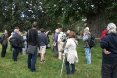 heritage-tree-surveyors-course-sept-2011-011