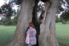 heritage-tree-surveyors-course-sept-2011-026
