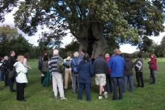 heritage-tree-surveyors-course-sept-2011-028