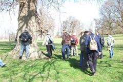 heritage-tree-surveyors-workshop-march-2012-111