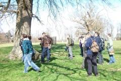 heritage-tree-surveyors-workshop-march-2012-112