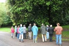 mote-park-guided-walk-june-2012-075