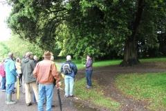 mote-park-guided-walk-june-2012-076