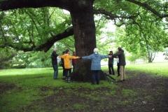 mote-park-guided-walk-june-2012-078