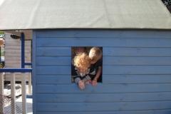 new-romney-childrens-centre-sept-2012-020