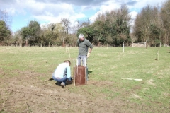 standen-community-orchard-apple-tree-planting-002