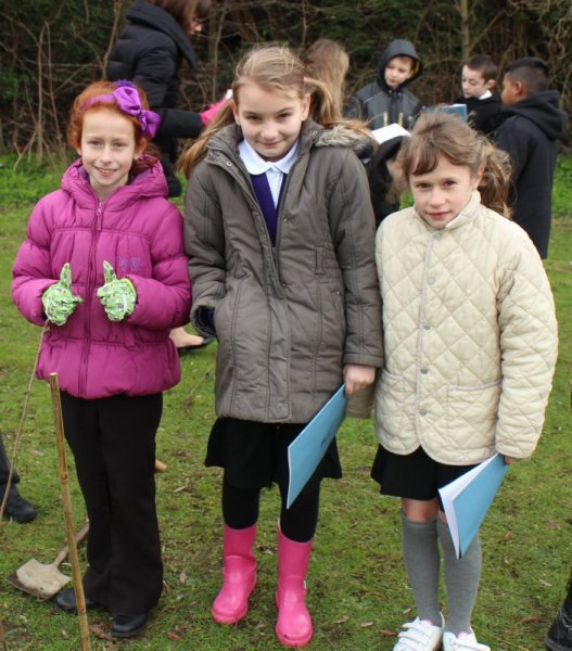 Jobs Home Office >> Tree planting with Oakfield Community Primary School - Kent Heritage Trees Project
