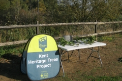 Leybourne Lakes Tree Trail Launchstand