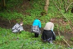 wittersham-habitats-11
